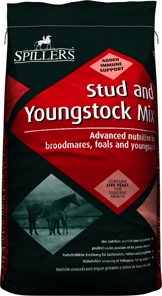 Stud Amp Youngstock Mix Farm And Country