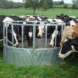 Heavy Duty Cattle Ring Feeder 183 Farm And Country