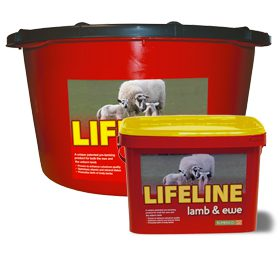 Lifeline Lamb Amp Ewe Bucket 183 Farm And Country